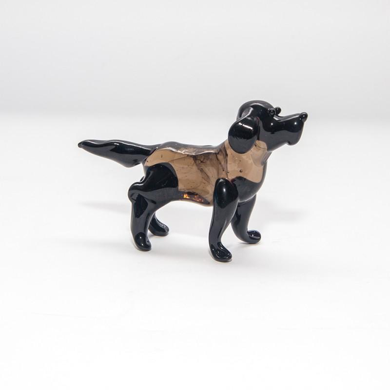 midi-dog-12