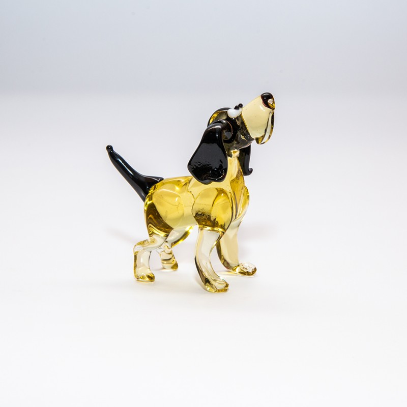 midi-dog-24