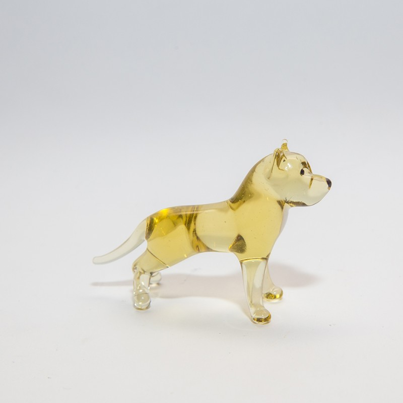 mini-dog-PLUS_31